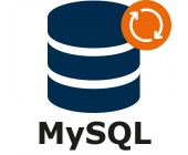 MySQL DB Plug-in – support & maintenance for 1 year (extension)