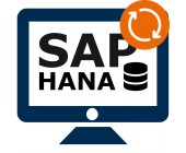 SAP HANA DB – support & maintenance for 1 year (extension)