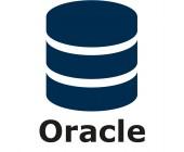 Oracle DB Plug-in