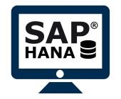 SAP HANA DB Plug-in