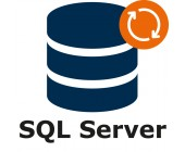 SQL Server DB – support & maintenance for 1 year (extension)