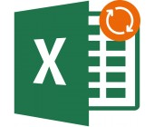 Excel – support & maintenance for 1 year (extension)