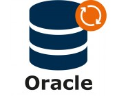 Oracle DB – support & maintenance for 1 year (extension)